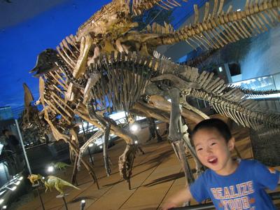 化石 (1).JPG