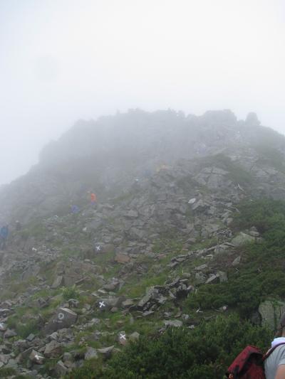 802親子登山 (5).JPG